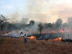Gorongosa Prescribed Burn, 2009.jpg