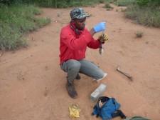 Alois Wambua (small mammal fundi, Mpala)